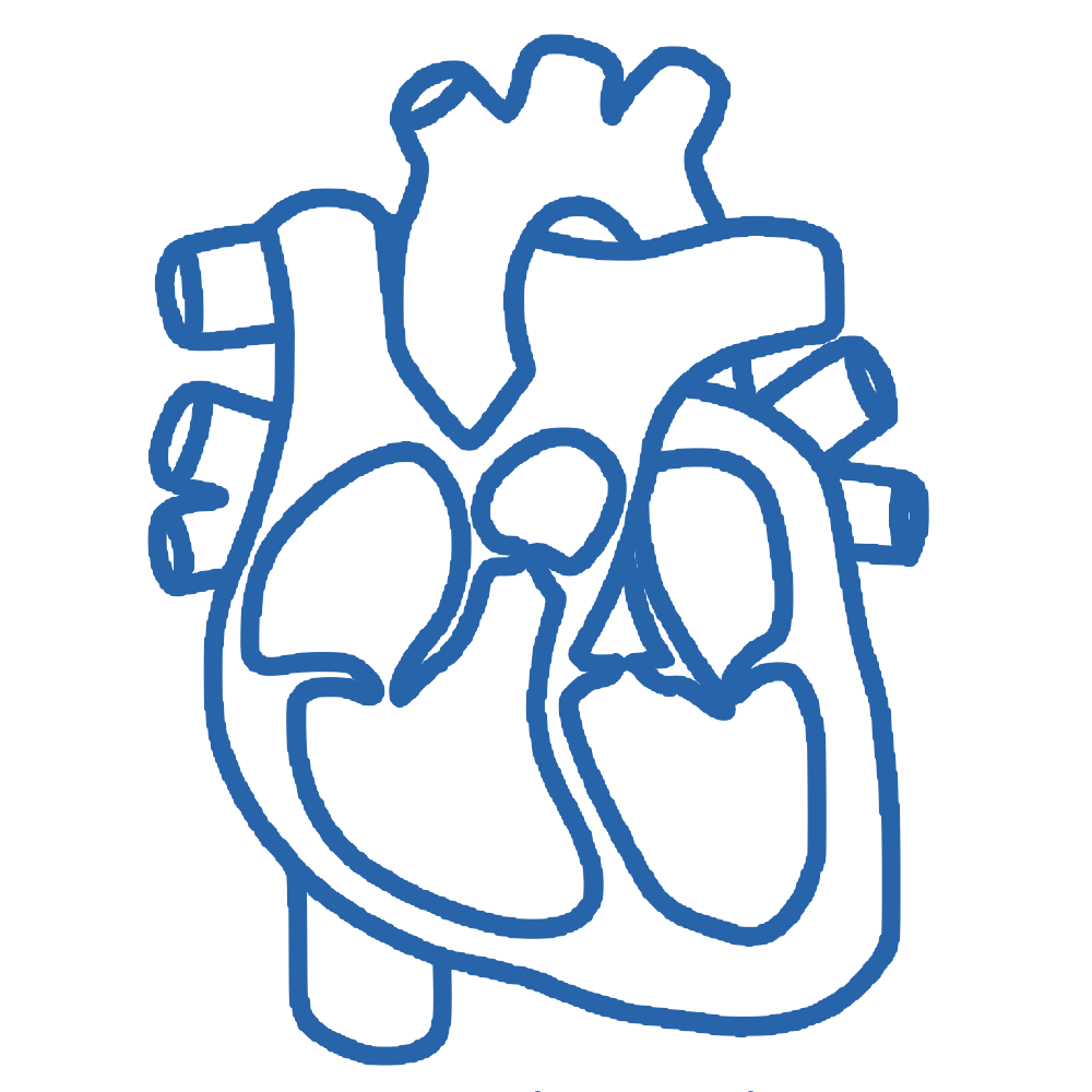 Studies conducted on effects of Gamma-Oryzanol in preventing Cardiorenal Metabolic syndrome
